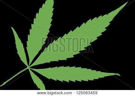 A high contrast weed leaf designed in black and green.