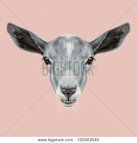 Cute face of grey Goat on pink background