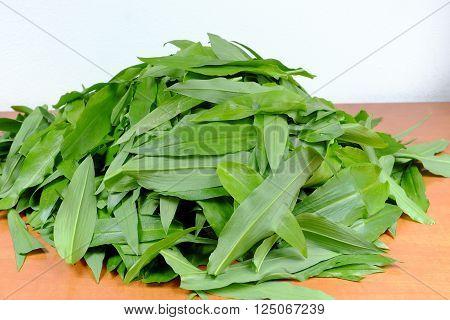 Leaves of wild garlic (Allium ursinum)  on wooden table