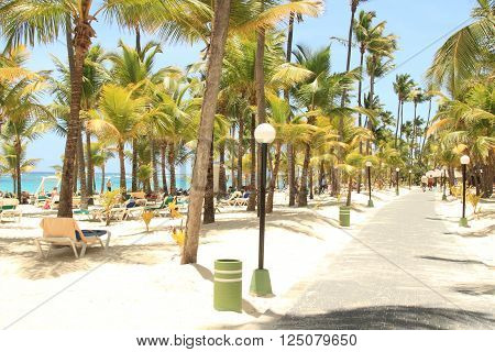 Dominican tropical resort with chairs on beach