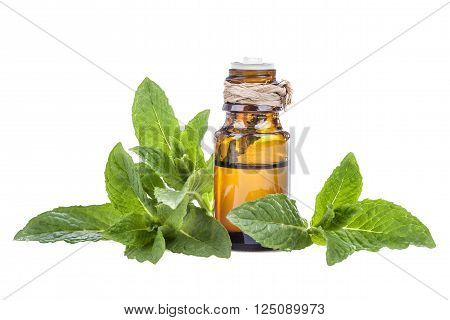 Essential oil made from mint on a white background
