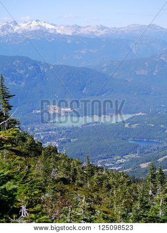 The Whistler Valley from a Hiking trail on Whistler Mountain