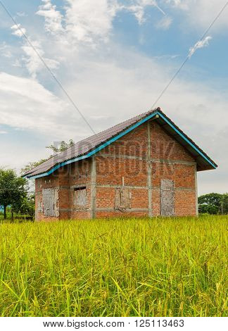 Abandoned houses in a rice paddy on blue sky.