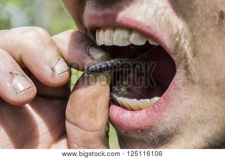 Survival in the wild. Hungry man eating caterpillar.