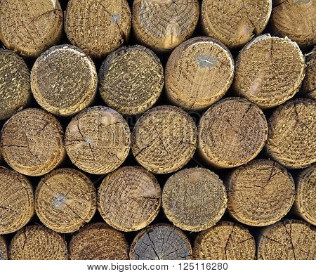 wood lumber posts detail closeup for building industry