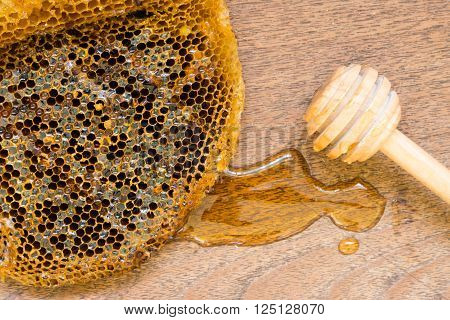 honeycomb with honey on the wooden background