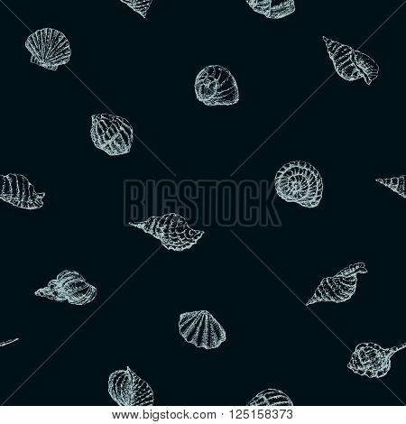 Vector pattern of the various sea shells.