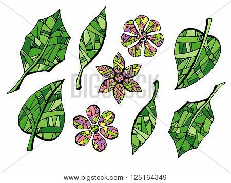 Collection of garden leaves on white background. Colorful hand drawn vector stock illustration