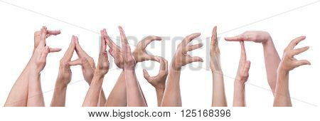 german word fanseite, which means fanpage, builded with lot of hands, isolated in front of white