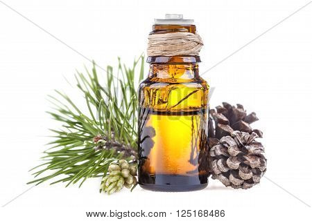 Essential oil made from pine on a white background