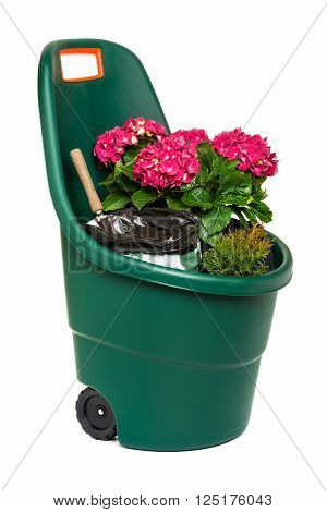 Modern easy go plastic gardening wheelbarrow full of plants flowers and some potting soil - isolated on white and with clipping path
