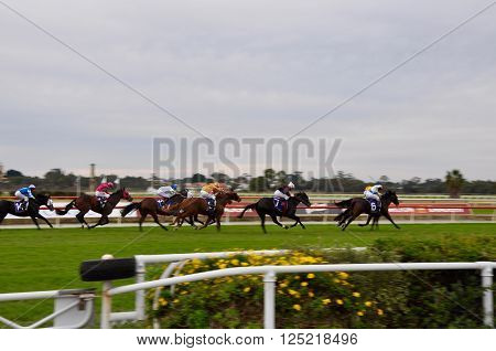BURSWOOD,WA,AUSTRALIA-MAY 30,2014: Jockeys racing horses around the manicured track at the Belmont Park Racecourse in Burswood, Western Australia.