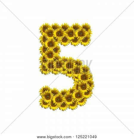 Sunflower number isolated on white background, number 5