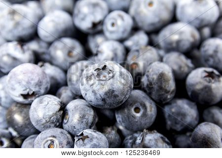 fresh blueberry blueberry on a table blueberry background