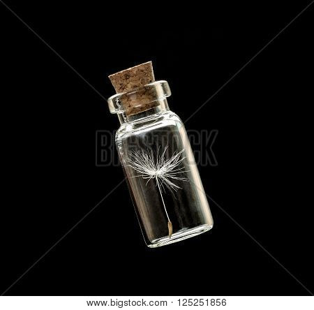dandelion seeds in small glass bottles with black background,  safeguard concept