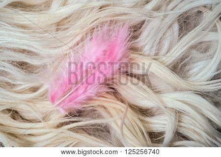 Pink feather on a white fur background