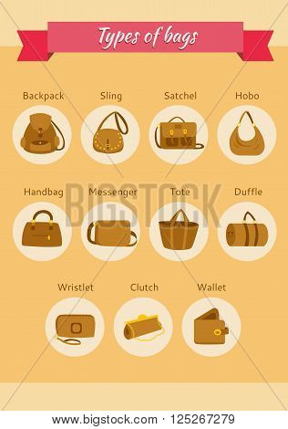 types of womens bags illustrated vector. What kind of bags woman needs?