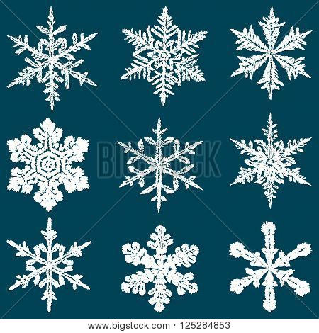 Vector drawing of the decorative christmas snowflakes.