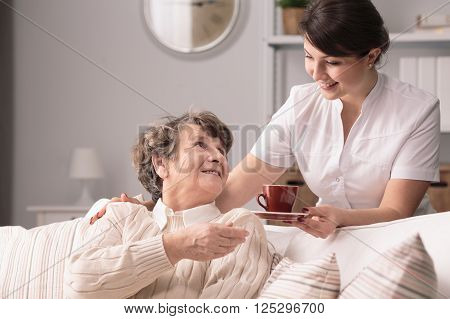 Young helpful caregiver serving hot tea to older woman