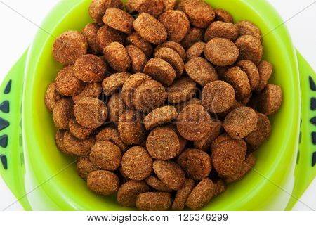 dry dog food in a bowl
