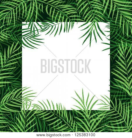 border frame tropical palm leaf 10eps