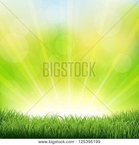 Green Sunburst Background With Green Grass And Sunburst, With Gradient Mesh, Vector Illustration