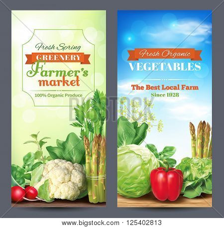 Two vertical banners for farmers market ad. Vector illustration.