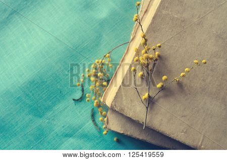 Spring retro still life - stack of old worn book with small mimosa branches. Dark vintage filter processing. Selective focus at the mimosa lying on the hardcover.