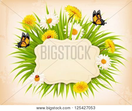 Spring banner with grass, flowers and butterflies. Vector.