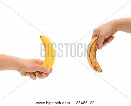 hands holding a fresh banana up and a over-ripe one down like mens penis as potency concept with clipping path