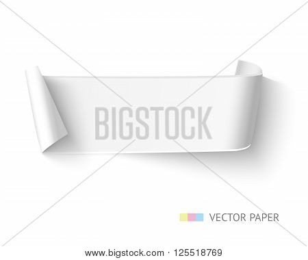 White blank paper curved ribbon banner with paper rolls isolated on white background. Realistic vector paper with space for text, message, advertising.