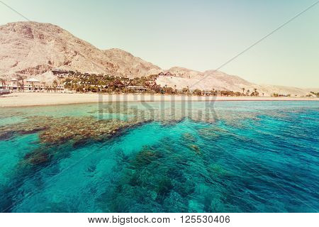 Red Sea With Coral Reefs