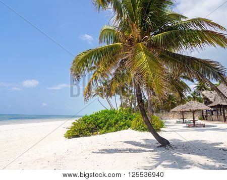 One of the beaches in Paje Zanzibar Tanzania.