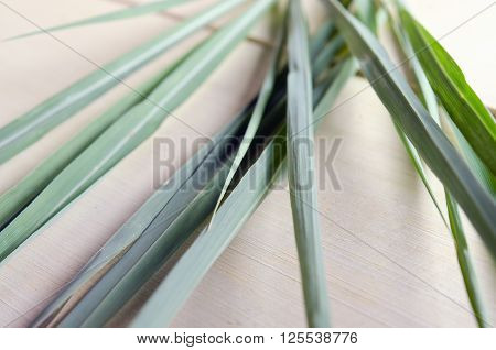 Lemon grass (Other names are lemongrass barbed wire grass silky heads citronella grass cha de Dartigalongue fever grass tanglad hierba Luisa or gavati chah) isolated on wooden board background