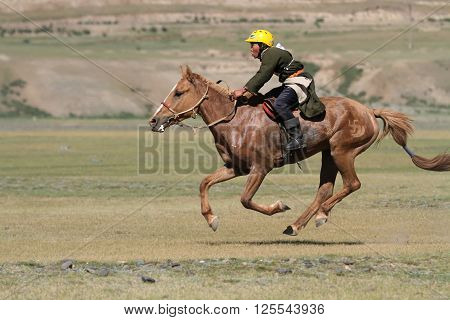 KHARKHORIN MONGOLIA JULY 8 - Horse racing during Naadam midsummer festival on July 8 2013 in Kharkhorin Mongolia. Naadam is inscribed on the Representative List of the Intangible Cultural Heritage of Humanity.