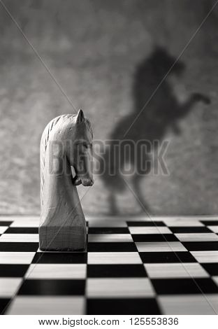 Leadership and success, chess piece with a rearing horse as shadow