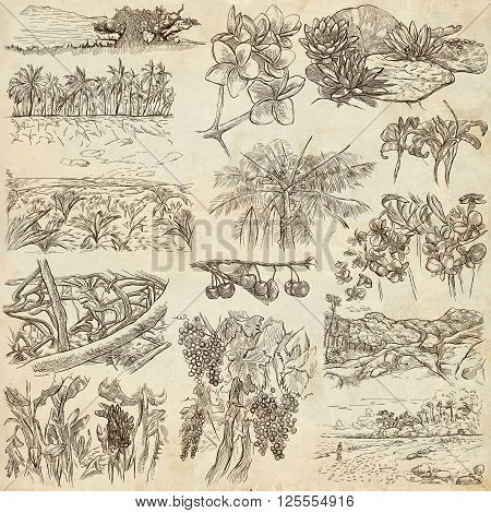 FLOWERS and TREES. Collection of an hand drawn illustrations. Description Full sized hand drawn illustrations - freehand sketches. Drawings on old paper background.