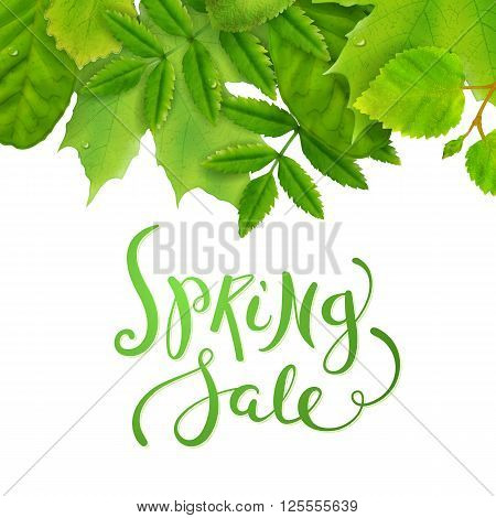 Spring sale label with fresh green leaves