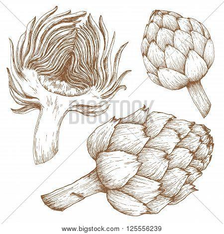 Beautiful image with nice hand drawn graphic artichoke