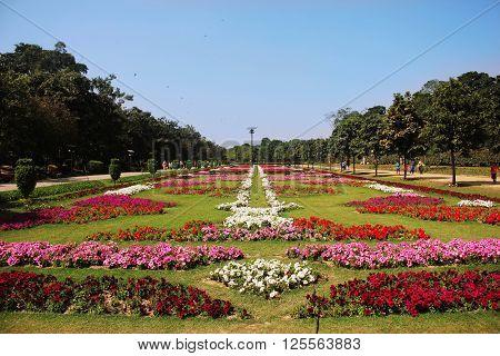 Lahore, Punjab, Pakistan - Mar 26,  2016 - Beautiful Flower exibition Lahore 2016 in race course park.