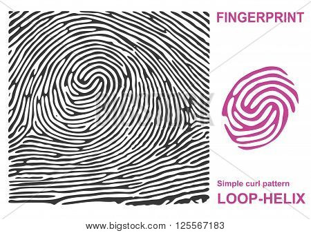 Black finger print. Fingerprint shape. Fingerprint secure. Fingerprint identification. ID fingerprint. Push fingerprint for unlock. Fingerprint pressure. Fingerprint vault. Vector Fingerprint.