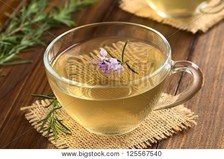 Freshly prepared rosemary herbal tea in glass cup garnished with rosemary flower photographed on dark wood with natural light (Selective Focus Focus on the first flowers)
