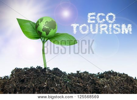 Eco tourism word cloud next to a small green world growing from a seedling