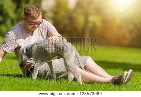Men Playing with His Bedlington Terrier Dog in the Park During Summer Day. Dog Man's Best Friend.