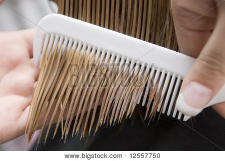 Hairdresser combing through in hair salon