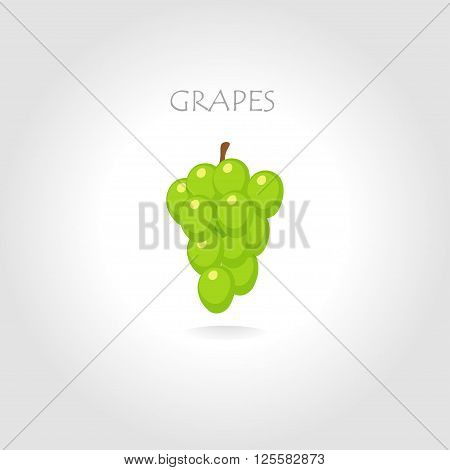 green grapes vector illustration with text tittle