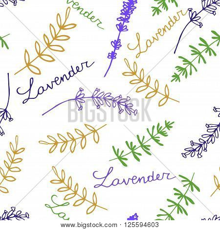 Lavender. Seamless pattern  on the white background. Hand-drawn original background