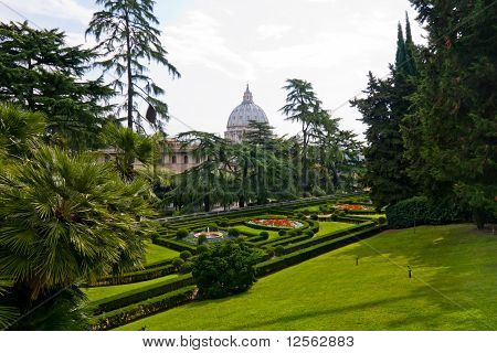 View At The St Peter's Basillica