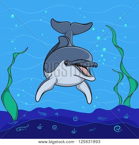 Dolphin background underwater seabed. Color vector illustration.