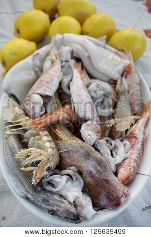 assortment of bluefish to prepare a sea soup with fish mixed ** Note: Shallow depth of field